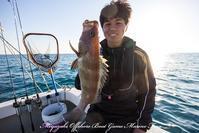 2017,02/25 鯛ラバ - 鯛ラバ遊漁船  Miyazaki Offshore Boat Game Marine Frog