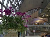 帰りたくないなー@スワンナプーム空港 - 続☆今日が一番・・・♪