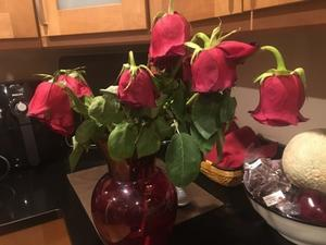 バレンタインの花で、薔薇風呂してみた - 都会に疲れたニューヨーカーたちへ~NY ロックランドの週末