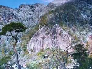 新城市 山全体が天然記念物の鳳来寺山     Mount Horaiji in Shinshiro, Aichi  - やっぱり自然が好き
