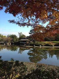 立川 国営昭和記念公園 - IMASATO Planting