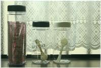 プラの水筒とスパイスボトル - My sweet life
