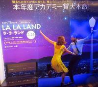 【ラ・ラ・ランド(La La Land)】 - お散歩アルバム・・春めく日々