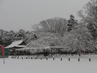 雪の上賀茂神社 - とりあえず、ぼちぼちと ~第2幕~