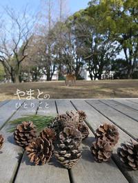 散歩の喜び - yamatoのひとりごと