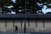 ふたり - Noriko's Photo  -light & shadow-