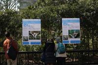 ハシビロコウの人気が急上昇中です。 - 動物園のど!