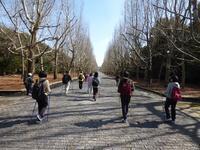 公民館体験イベントのお手伝い - 大阪北摂のノルディック・ウォーク!TERVE北大阪のブログ