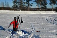 2月3月はクロスカントリースキー日より - Kippis! from Finland