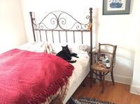 ベッドメイキングできませんがー - にゃんこと暮らす・アメリカ・アパート