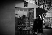 何処へ万代 2017 #17 - Yoshi-A の写真の楽しみ