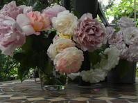 ディプロマコース 「ツルバラを植える」No2 - 心とカラダが元気になるアロマ&ハーブ・ガーデンの教室chant rose