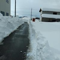 33年ぶりの大雪 - Tottori Style