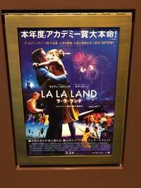 ラ・ラ・ランド - 5W - www.fivew.jp