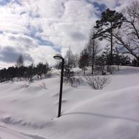 いぶきの里スキー場 - ねこまるのときどき日記