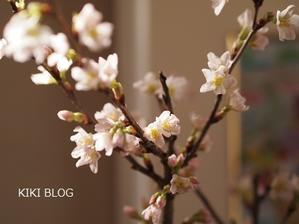 アラウンド60 パリジェンヌスタイル(本) - KIKIブログ