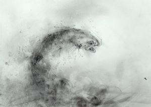 《滝に立つ。》 8岩魚反転 - 『ヤマセミの谿から・・・ある谷の記憶と追想』