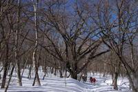 赤城山 雪原散歩 (撮影日:2017/2/25) - toshiさんの気まぐれフォトブログ