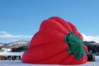 熱気球2(離陸前) - くろちゃんの写真