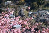 電車と桜。。。☆彡 - DAIGOの記憶