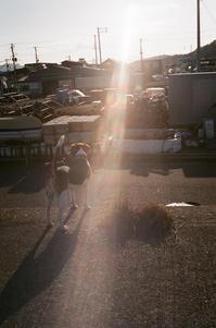 漁港、逆光、ペコ - アワジシマイッシュウ(某島民)