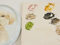 【手描きポーセリンの肖像画】トイプードルLちゃん制作中♪ - びいどろ彫師のつぶやき ~GLASSアルペンローゼ 店主のつれづれ日記~