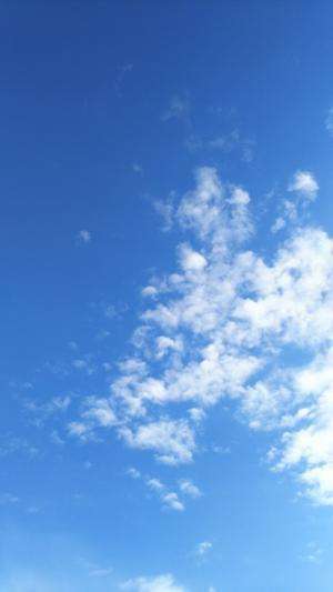 フリーな休日。 - HOSUMIの美しく楽しい毎日
