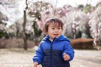 EF50mm F1.8 STMで撮ってみた 大宮第二公園で梅のお花見 - Full of LIFE