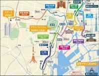 2017 東京マラソン - 鳥見って・・・大人のポケモン