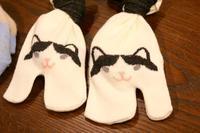 にゃんこ劇場「フィーバーニャイト」 - ゆきなそう  猫とガーデニングの日記