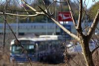 バスを撮ってみる - miyabine's フォト日記2~身の周りのきれい・可愛い・面白い~