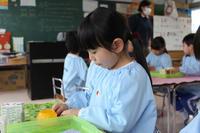 ひな人形を作ろう(さくら) - 慶応幼稚園ブログ【未来の子どもたちへ ~Dream Can Do!Reality Can Do!!~】