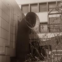 春の陽気にうっかり大あくびをする区役所の大きなラッパ - Film&Gasoline