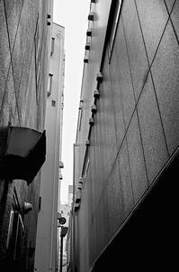 春惜月 寫誌 ① 街裏を撮る… - le fotografie di digit@l