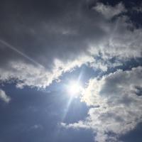 ☆しょくぶつのかおりをいっこずついっこずつ☆ - 神戸でアロマテラピーを。