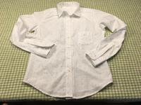 コンパクトスタイルシャツとV開きシンプルシャツ完成! - のらりくらりと