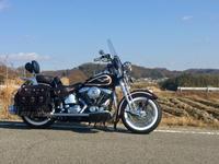 Take it easy♪ 気楽にバイクと付き合いましょう♪ - The 30th Freedom カワサキZ&ハーレー直輸入日記