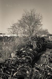 2017年3月2日 自転車捨て山 - Silver Oblivion