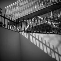 2017年3月3日 直線的な都会の光蜥蜴 - Silver Oblivion