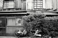 路地裏哀歌(ろじうらエレジー) - 三河島 Part.2 - - 夢幻泡影