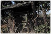 六義園 -13 - Camellia-shige Gallery 2