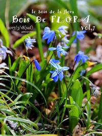 3/18花屋さんのイベント「BOIS DE FLORA 7」出展させていただきます - a piece of dream*