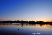 蓮華寺池公園の朝 - 長い木の橋