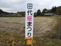 「田代を活性化する会」田辺さんの桜を見に行ってみませんか? - 柴まみママの大多喜便り