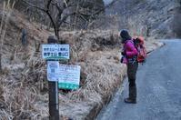 2017 初登山 ~福寿草を見に岩宇土山・上福根山へ~ - きりしまゆるHike