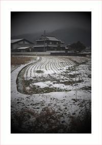 1747 組写真(パンタッカー50㎜F2.3で雪の八変化を撮ってみた) - レンズ千夜一夜