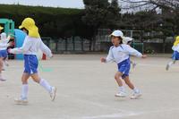 しっぽとり(こすもす) - 慶応幼稚園ブログ【未来の子どもたちへ ~Dream Can Do!Reality Can Do!!~】