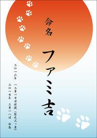 体重測定(2017年3月)〜ファミ吉 その後2〜 - NEKO LOG 別館「パーマン猫と申します」