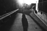 shadow(3cut) 朝の散歩 -     ~風に乗って~    Present