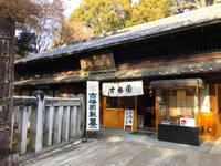 奈良のしめくくり新薬師寺へ - むつずかん
